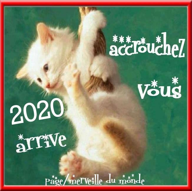 bonne-annee_040c.jpg